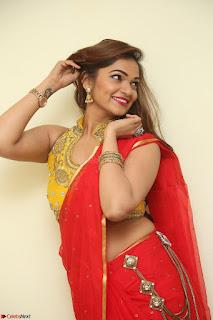 Actress Ashwini in Golden choli Red saree Spicy Pics ~  039.JPG