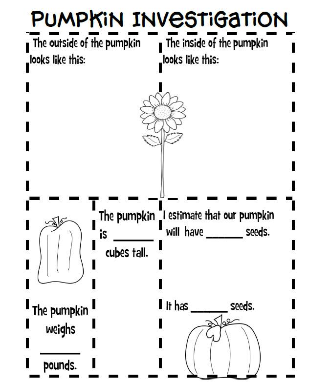 Fun For First Pumpkin Investigation