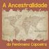A Ancestralidade do Fenômeno Capoeira