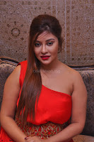 Payal Ghosh Looks Stunning in Red Half Shoulder Gown 046.JPG