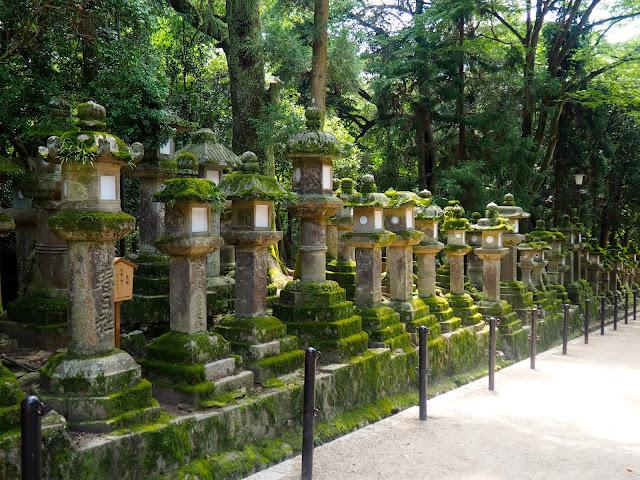Nara Park, Kansai, Japan