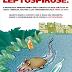 Chuvas fazem aumentar o risco de contaminação por leptospirose