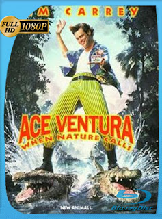 Ace Ventura 2 (1995) HD [1080p] Latino [googledrive] dizonHD
