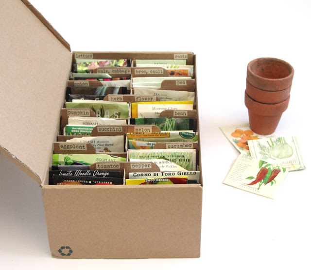 shoebox-turned-diy-seed-box-apiecofrainbowblog