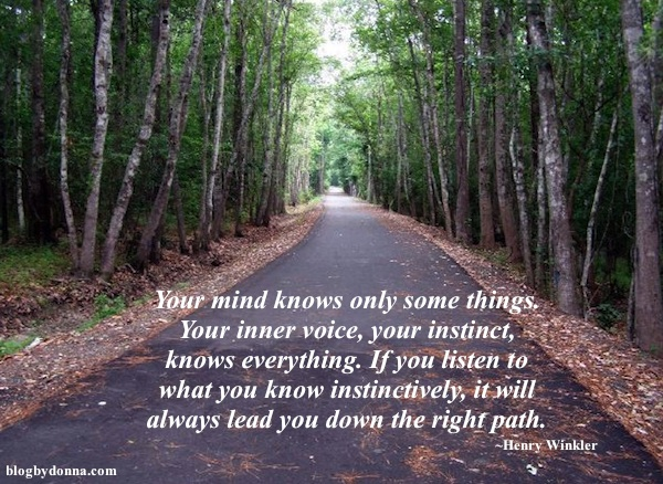 Going Down The Wrong Path Quotes: Letters From Launna: Choosing To Trust, Even If I Am Afraid