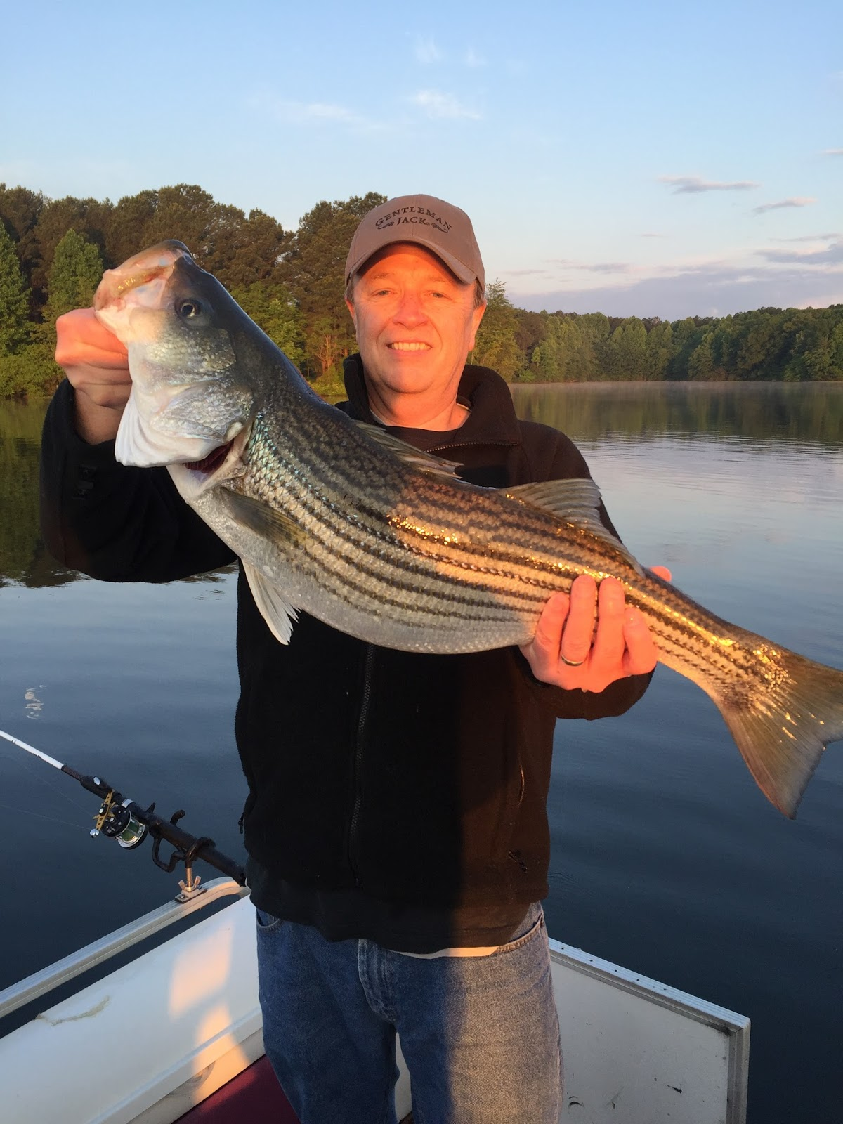 Striper report recent catches jim hemby guide service for Lake anna fishing report