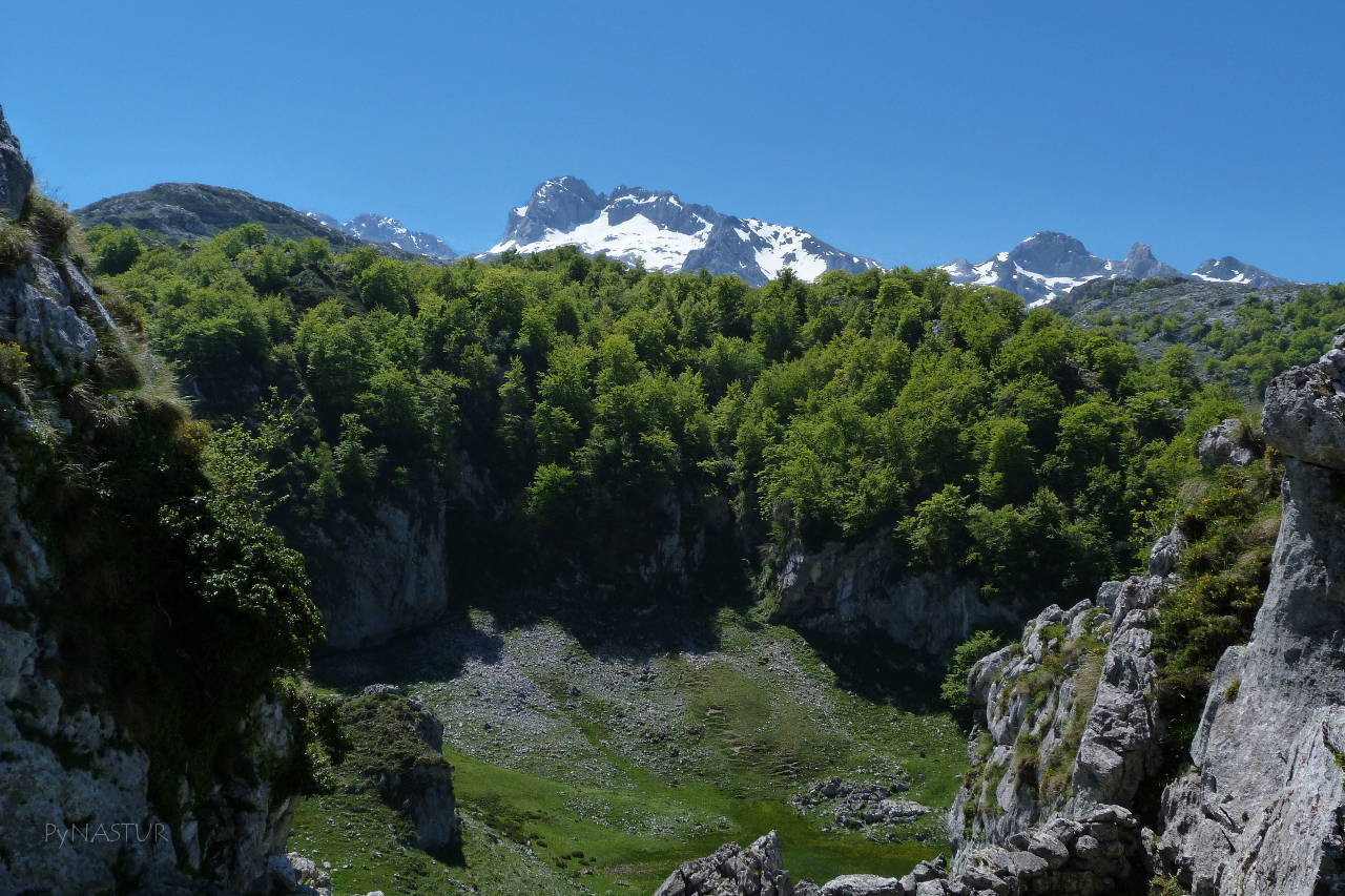 Vega el Bricial - Hayedo Palomberu  - Peña Santa de Enol - Picos de Europa