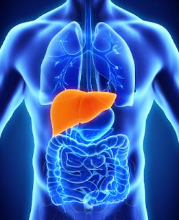 Cara Mencegah Penyakit Hepatitis