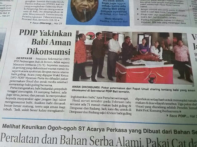 Astaghfirullah.... PDI P Yakinkan Babi Aman Dikonsumsi