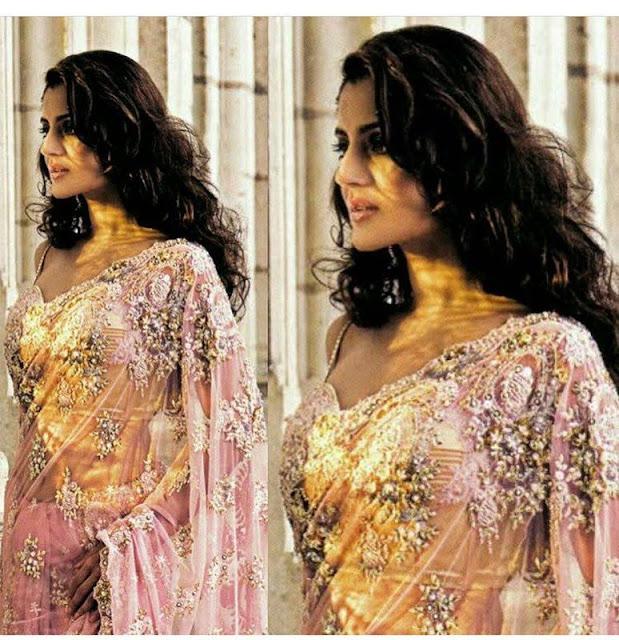 Actress Ameesha Patel Sexy Saree Images