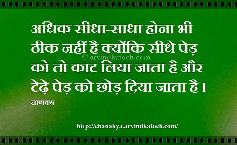 Straight Trees Are Cut First Hindi Thought सध पड क