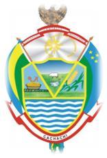 Resultado de imagen para bandera de cachachi