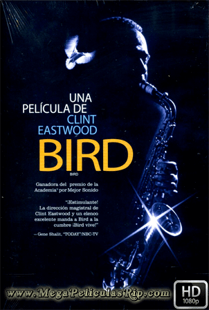 Bird [1080p] [Castellano-Ingles] [MEGA]