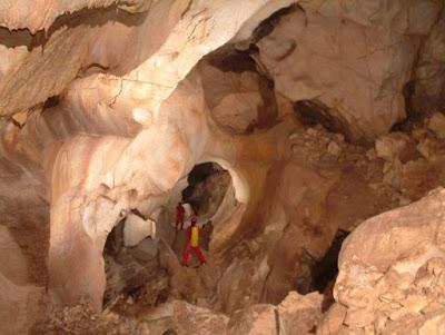 Ανακάλυψη νέων οργανισμών στο σπήλαιο Μελισσότρυπα