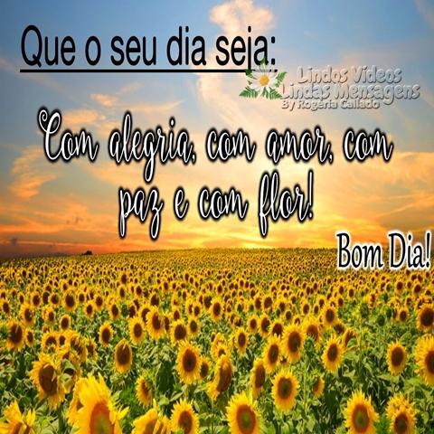Que o seu dia seja:  Com alegria, com amor,   com paz e com flor!  Bom Dia!