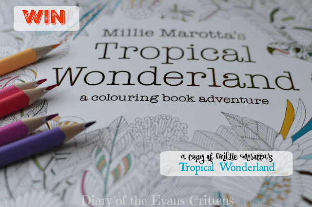 Millie Marotta's Tropical Wonderland a colouring adventure book