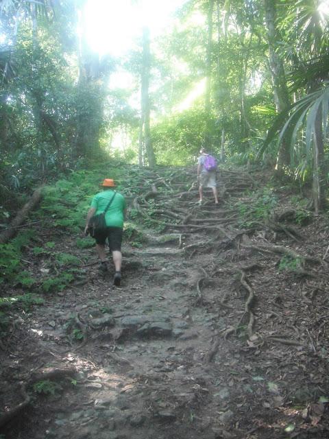 Tikal National Park Guatemala Mayan ruins jungle trail