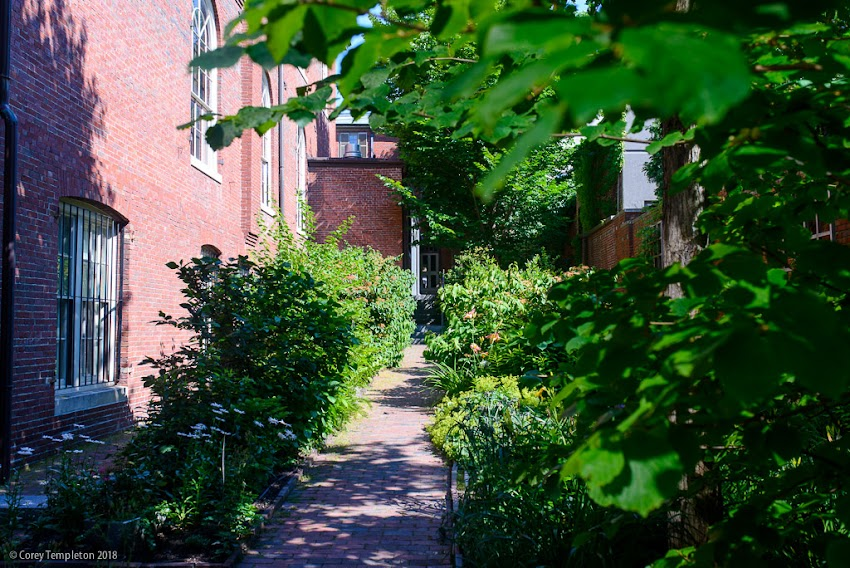 Portland, Maine USA July 2018 photo by Corey Templeton. A stroll through the beautiful garden at the Longfellow House on Congress Street, part of the Maine Historical Society headquarters.