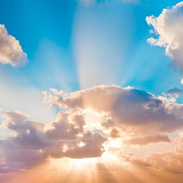 —¿No te dije que si crees verás la gloria de Dios? —le contestó Jesús.