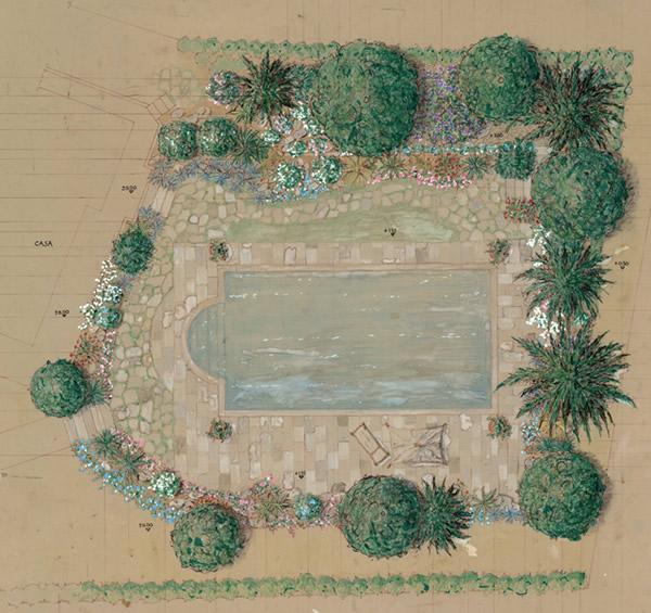 O ci sei o ti fai - Progetto giardino mediterraneo ...