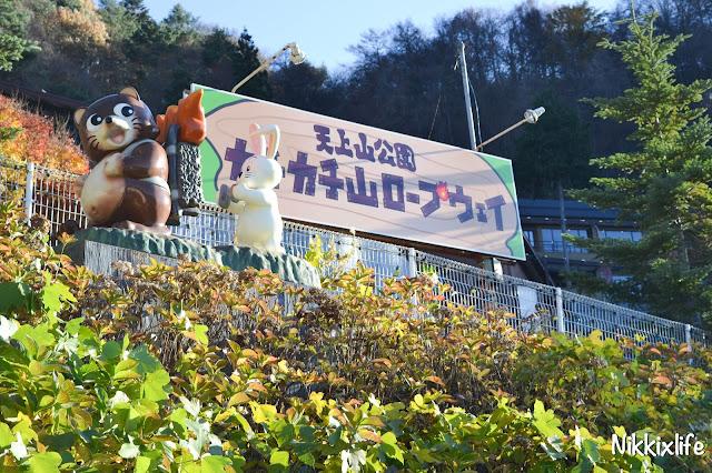 【日本。河口湖】天上山公園・高人一等的必訪景點 5