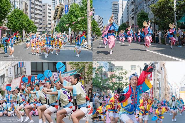志留波阿連、マロニエ祭りの記事のカバー写真