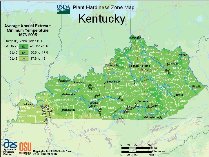 Farmers Know Best: Kentucky USDA Plant Hardiness Zones Map - Growing on usda weather map, usda garden map, usda frost map, usda regions map, usda zone chart, agricultural zone map, ahs heat zone map, plant zone map, texas state plane coordinate zones map, usda zone 8 map, fruit zone map, usda climate zones, usda crop zones, usda zone map of jacksonville florida, wind zone rating map, usda gardening zones, usda home map, usda zone map 2014, bangladesh map, growing zone map,