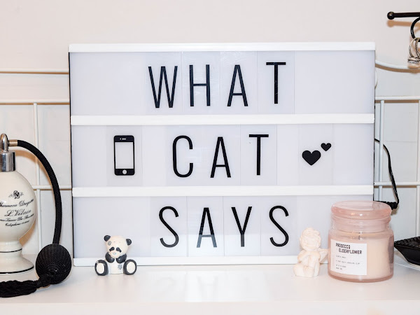 What Cat Says in 2018