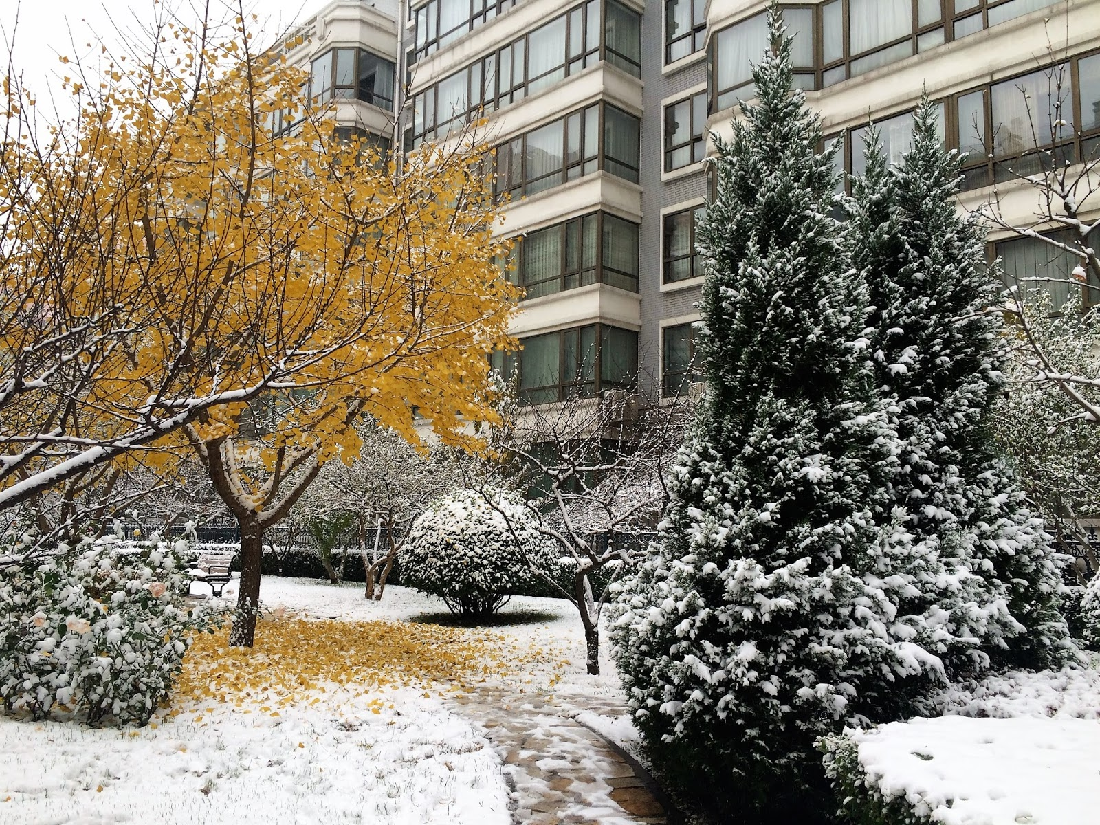 "Snow & Art – A ""Winter"" Day"