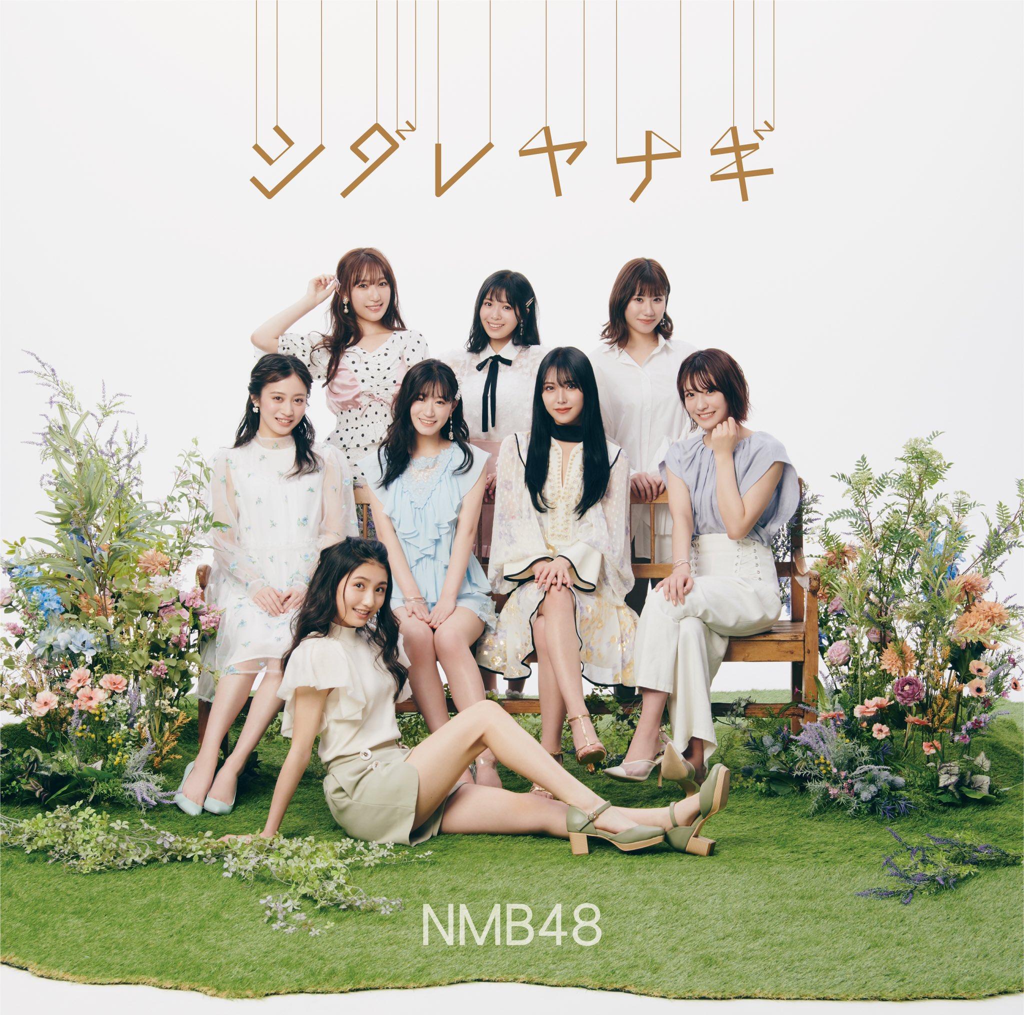 NMB48 - シダレヤナギ