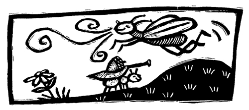 Cerita Fabel Bahasa Inggris Semut Dan Belalang Terjemahan