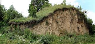 Skała lessowa Przemysław Czopor [CC BY 3.0 (http://creativecommons.org/licenses/by/3.0)],  via Wikimedia Commons