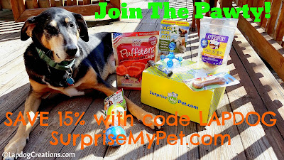 Teutul thinks you should #JoinThePawty and SAVE 15% with code Lapdog at SurpriseMyPet.com #dogtoys #dogtreats #SurpriseMyPet #petbox #LapdogCreations ©LapdogCreations