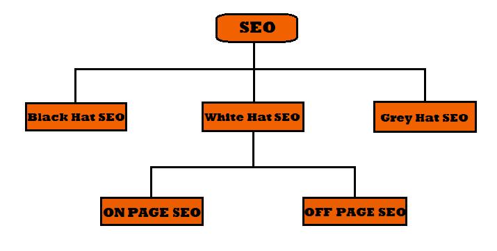 Types  Of SEO-Black Hat SEO,White Hat SEO,Gray Hat SEO