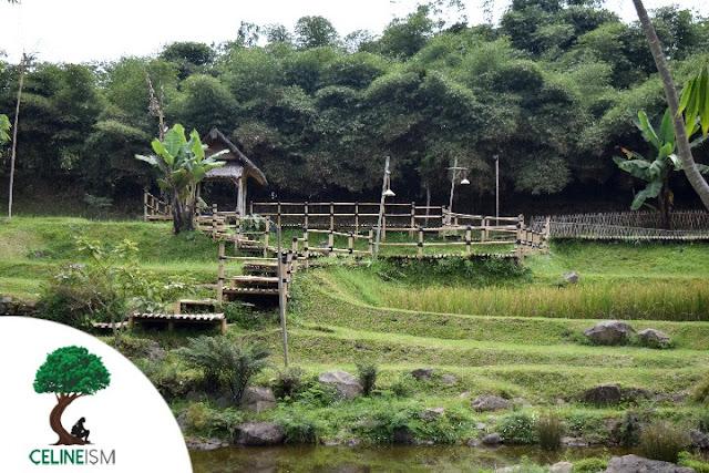 bamboo village indonesia
