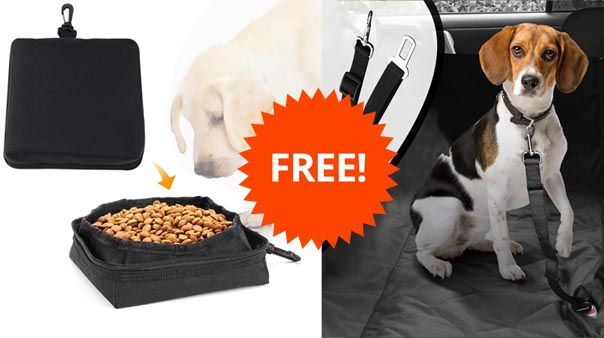 pet-seat-covers-for-cars