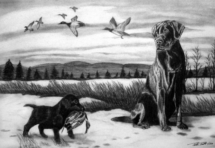Рисунки карандашом. Peter Piatt 5