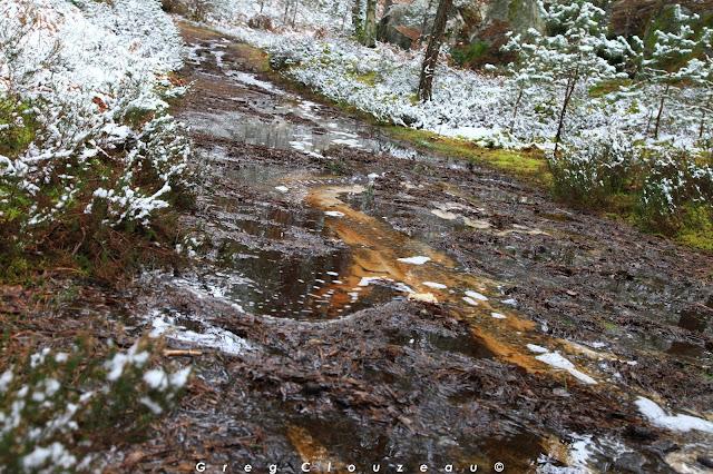 Un ruisseau éphémère dans les Trois Pignons, la conséquence d'une mare de platière qui déborde...