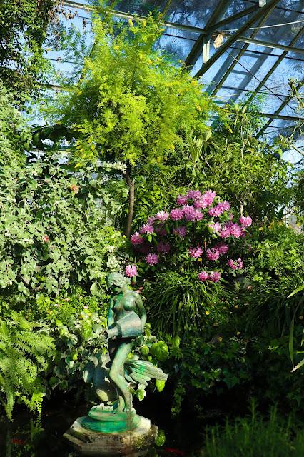 Allan Gardens Conservatory Toronto Park Flowers Water