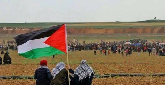 Jokowi Tegaskan Kemerdekaan Palestina Prioritas Indonesia