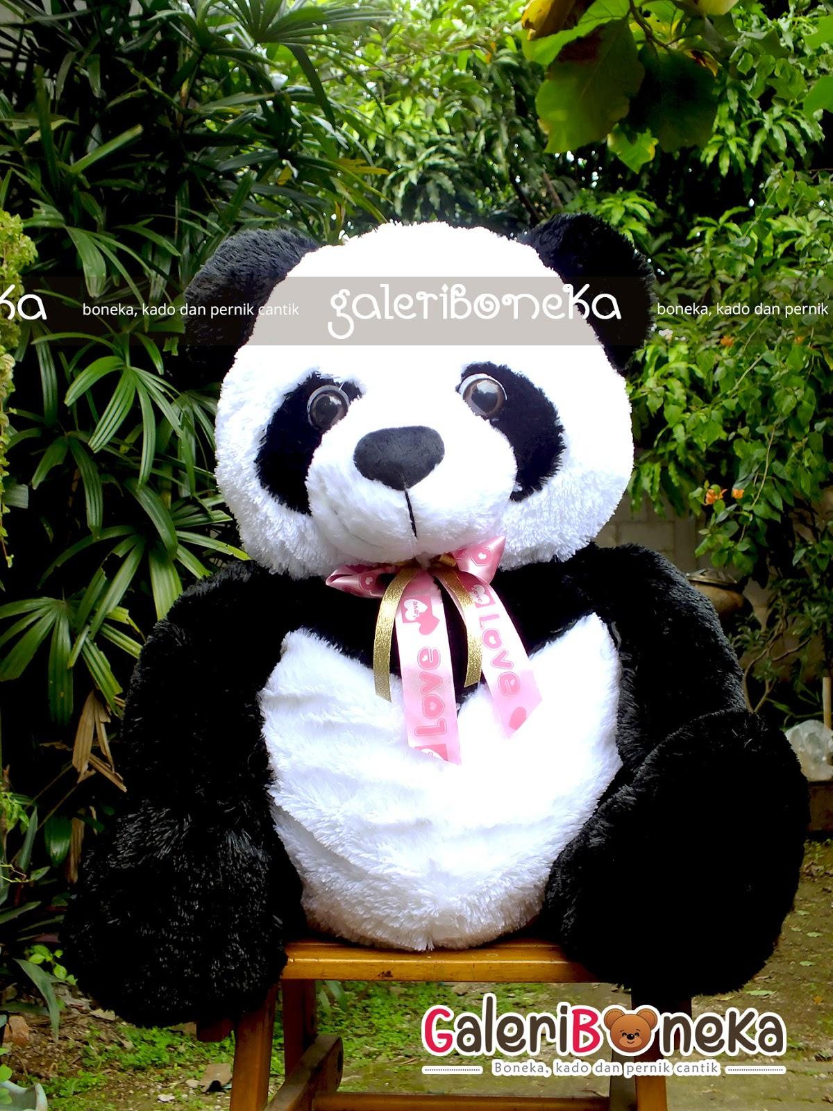 Gambar Boneka Grosir Murah Panda Besar Pola Gambar di