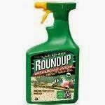 Roundup est le nom commercial d'un herbicide produit par la compagnie américaine Monsanto et commercialisé depuis 1975