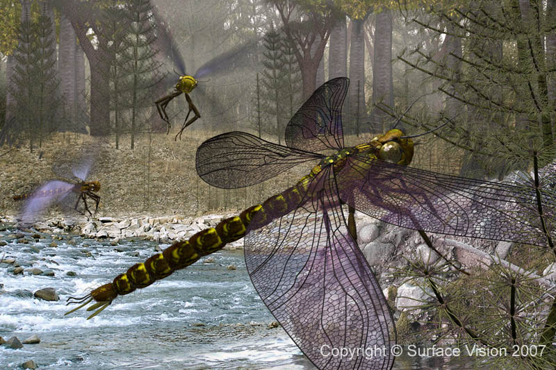 giant insects prehistoric - photo #8