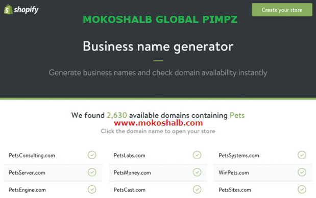 shopify bussiness name generator