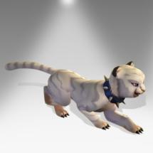Ghostly Cat Cub - Pirate101 Hybrid Pet Guide