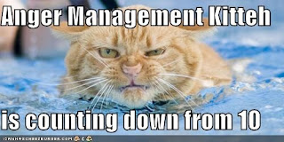 lolcats anger mgt kitteh