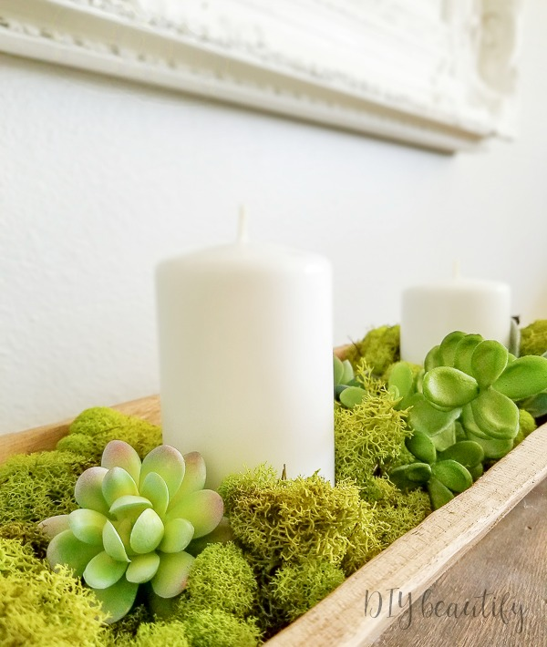 Spring decorating with succulents