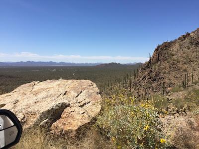 Cactus, National park, Karfelt,