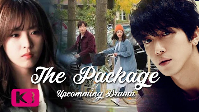 The Package Subtitle Indonesia [Complete]