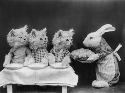 Vintage Pictures of Cats And Dogs Dressed As People ...